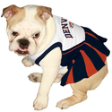 Amazon.com: Pets First DEN-4007-MED NFL Denver Broncos Dog Cheerleader Dress, Medium: Pet Supplies