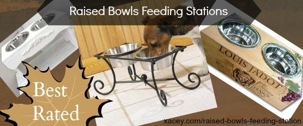 Headline for Raised Bowls Feeding Stations