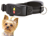 Best GPS Dog Tracker Reviews and Ratings 2014
