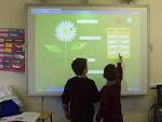 On Interactive Whiteboard