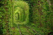 Tunnel of Love - Ukraine