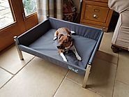 Elevated Dog Bed - Henry Wag | Canine Concepts