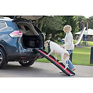 Buy Lightweight Folding Dog Ramp Online UK