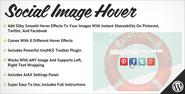 Social Image Hover for WordPress Preview - CodeCanyon