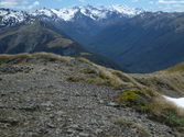 Lewis Pass Tops