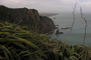 Karekare beach, 45mins from Auckland