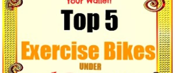 Headline for Best Upright Exercise Bikes Under 300 Dollars With Reviews 2014