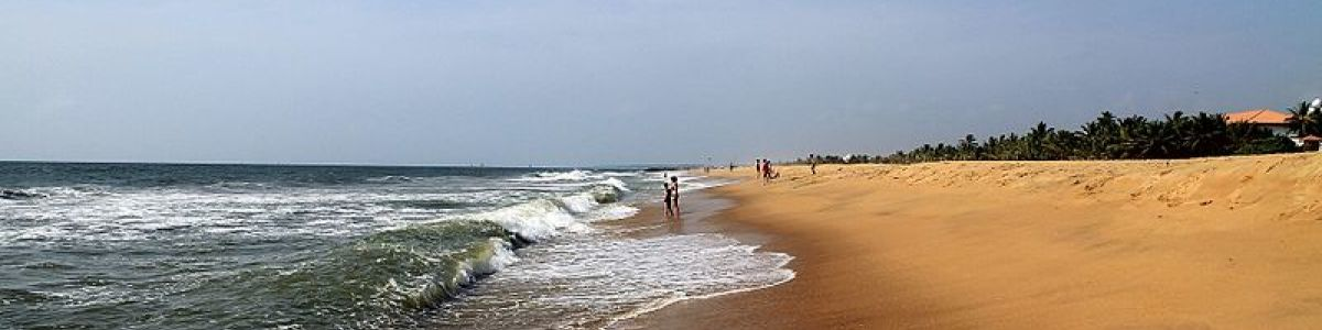 Headline for Things to Do Around Negombo - Top three activities for the transit city