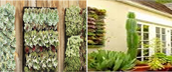 Headline for Best Outdoor Living Wall Panel and Planting Grid Reviews for 2014
