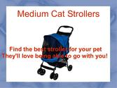 Find Medium Cat Strollers for you Furry Friend
