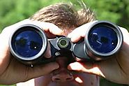 Best Compact Binoculars For Bird Watching Reviews