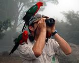 Best Compact Binoculars For Bird Watching - Ratings and Reviews. Powered by RebelMouse