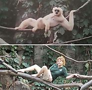 This is What Zookeepers Do after Closing Hours · Love Your Pet