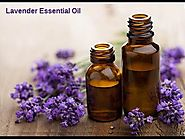Lavender Essential Oil Cure All In a Bottle