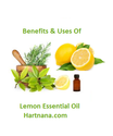 essential oils Archives - Hart Nana