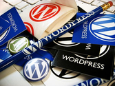 Useful Plugins For WordPress Beginners