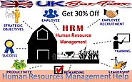 Management Assignment Help | Marketing Project Homework Help