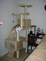 Cat tree - Wikipedia, the free encyclopedia