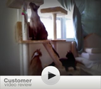 Best wayfair post cat tree. Powered by RebelMouse