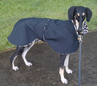 Best Rated Raincoats for Large Dogs 2014
