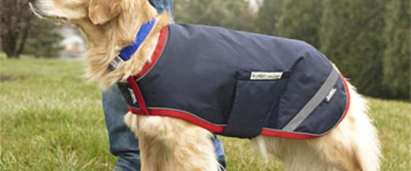 Headline for Best Rated Raincoats for Large Dogs 2014
