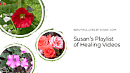 Susan's Healing Videos Playlist ·