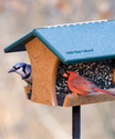 Bird Feeders, Wild Bird Feeders, & Bird Feeding Supplies | Products | Wild Birds Unlimited