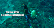Best Diving Destinations Of Indonesia | Bali Holiday Tour Packages – Antilog Vacations