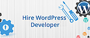 Hire WordPress Developer - CMS Developers in India