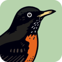 Peterson Birds — A Field Guide to Birds of North America