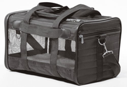 Best Pet Carriers for Large Cats