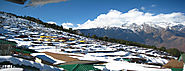 Auli Travel Agents/Tour Operators/Travel Agency