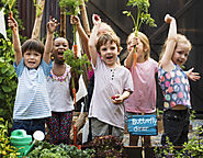 Easy Ways Children Can Do to Protect the Mother Nature