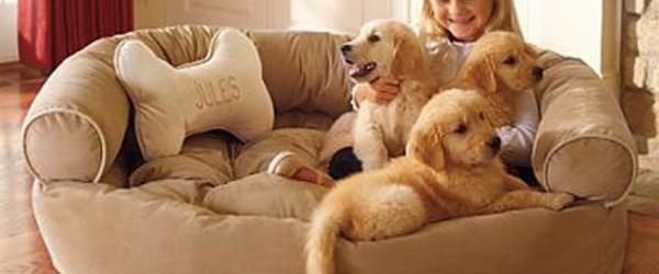 Headline for Comfy Couch Sofa Bed for Dogs