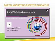Digital Marketing Expert in Udaipur