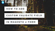 How To Add Custom Validate Field In Magento 2 Form? - Tigren