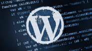 Dedicated WordPress Website Developer for Your Business Web Site