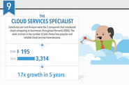 The Cloud Services Specialist