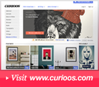 The Curioos Feed | Your Daily Shot of Creativity