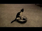 Roomba Driver