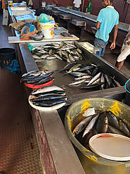 Fish market on Cabo Verde islands