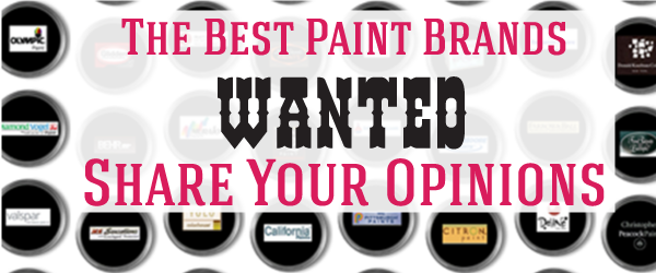 Headline for The Best Paint Brands