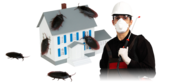 Pest Control Services Review