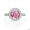 Buy Affordable/Inexpensive Pink Sapphire Engagement Rings With Diamonds
