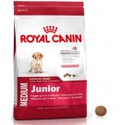 Healthy & Nutritious Dog food