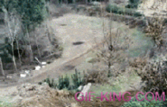 funny bike jumping fail | Funny People Images- Gif-King.com
