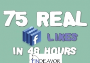 I'll give you 75 Facebook Likes in 48 hours for $15 : soferauto - Findeavor