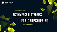 Comparing Top 5 Ecommerce Platforms For Dropshipping. The Best Is?