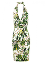 Dolce & Gabbana Cream & Green Crepe Lemon Blossom Print Dress