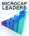 Top Micro Cap Stock Picks for Individual Investors